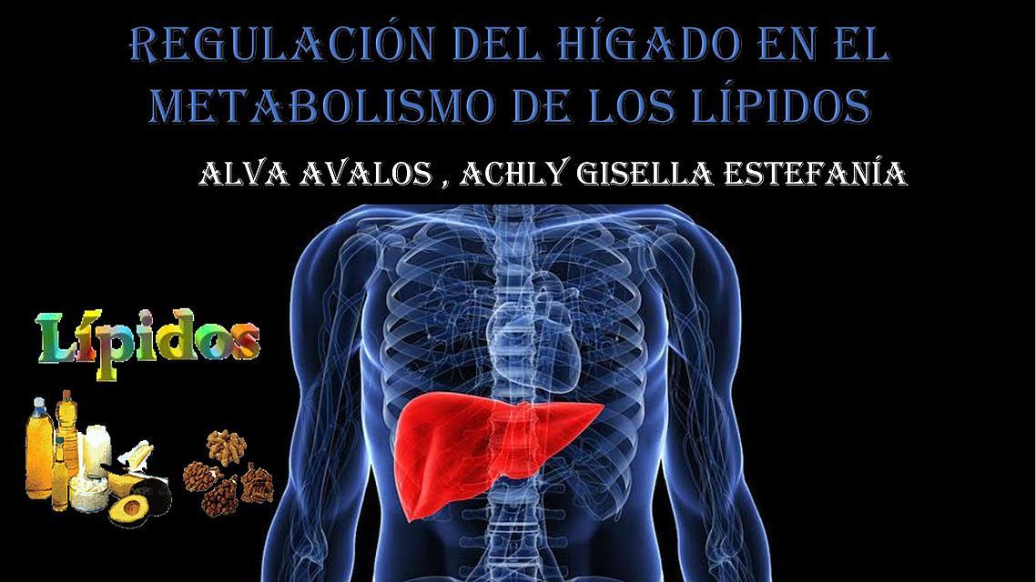 Metabolismo pitavastatina